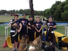 ▶ OneMind Dogs Challenge 2 - The Aussie way!!! - YouTube