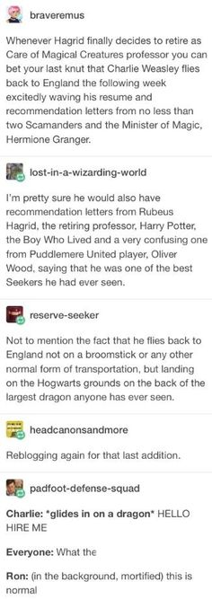 Headcannon Charlie Weasley becomes the next Care of Magical Creatures professor Can the dragen be the one Hagrid had in book Harry Potter Jokes, Harry Potter Fandom, Harry Potter Universal, Harry Potter World, Harry Potter Dragon, Harry Potter Professors, Hogwarts, Slytherin, Must Be A Weasley