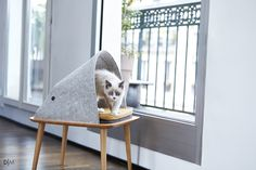 Design Matters - مبلمان شیک برای گربهها #cat #furniture