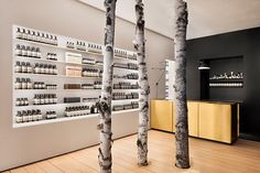 alain carle plants three birch trees into aesop westmount in montreal