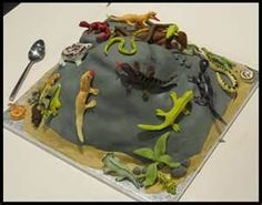 reptile cakes - Bing Images Animal Birthday, Amazing Cakes, Cake Ideas, Bing Images, Party, Desserts, Food, Tailgate Desserts, Deserts