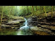 The pure sound of nature River Sounds - YouTube Oh The Places You'll Go, Cool Places To Visit, Places To Travel, Travel Destinations, Weekend Trips, Day Trips, Hiking In Virginia, Virginia Beach, West Virginia