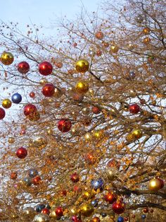 Lots of ornaments in the trees (Zurich, Switzerland)