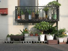 Aesthetic Japan, Japanese Aesthetic, E Room, Potted Plants, Plant Pots, House Plants Decor, Cottage Kitchens, Garden Pots, Aesthetic Pictures
