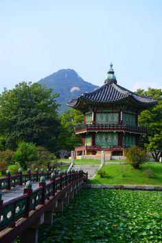 Journal d'un étudiant en Corée du Sud
