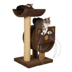 "Molly and Friends 37"" The 2-Tier Cat Condo Color: Hunter Green, Poles Color: Hunter Green"