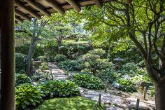 intimate meditation garden - Google Search
