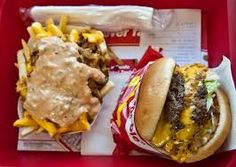 Image result for animal style in and out