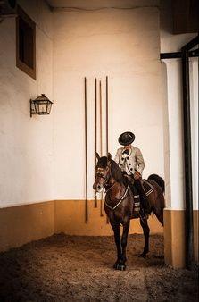 Juan Rubio Martinez at The Royal Andalusian School of Equestrian Art. Photo © Gianfranco Tripodo