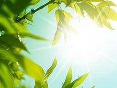 #Summer #été #soleil #sun #inspiration #NUXE