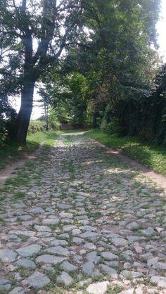 Petrovaradin Fortress - Serbia - Novi Sad
