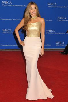 2014: Sofia Vergara wore a white Romona Keveza sleek gown with metallic gold bodice. She looks great covered up! Perfect and appropriate dress for this event. I love the metallic bodice for some sparkle and shine.