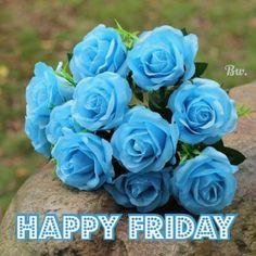 Hello Friday, Happy Friday, Good Morning, Rose, Flowers, Plants, Buen Dia, Pink, Bonjour