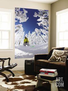 tyler-roemer-snowboarder-going-through-trees-in-powder-snow-at-hoodoo-ski-resort_i-G-58-5875-YPBPG00Z.jpg (366×488)