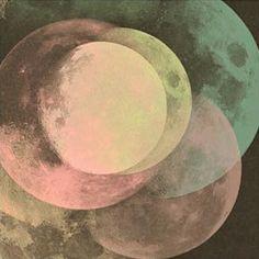 Na noite da floresta  A lua iluminou#soumanaca #inverno16 #penaestrada by soumanaca