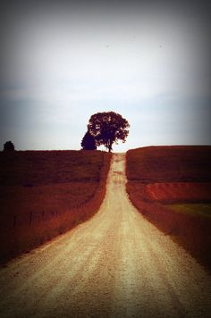 For the Love of Gravel Roads... I love this picture