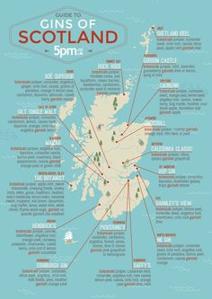The Scottish Ginfographic. Picture: 5pm.co.uk