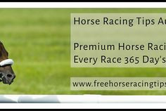 Is Betting On Horse Racing Easy?