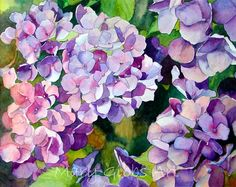 """""""Blooms by the Road"""" watercolor by Mary Gibbs"""" Mary Gibbs, Watercolour Painting, Watercolor Flowers, Watercolors, Hortensia Hydrangea, Irises, Botanical Art, Flower Art, Collages"""