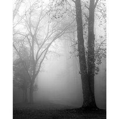 <li>Artist: Nicholas Bell</li><li>Title: November Fog</li><li>Product type: Canvas</li>