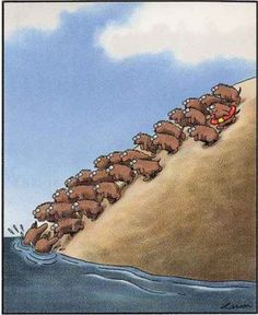 The Far Side - Gary Larson (if you're going to be a lemming, be an informed… Far Side Cartoons, Far Side Comics, Funny Cartoons, Gary Larson Far Side, The Far Side, Science Humor, Fun Comics, How To Get Rich, Funny Cute