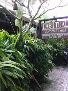 Habitual BAli