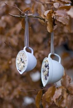 Dishfunctional Designs: My Cup Of Tea - Teacup Crafts & Home Decor- Suet & birdseed teacup bird feeders for winter garden architecture 21 Creative Upcycled Teacup Projects Garden Crafts, Garden Projects, Home Crafts, Diy Projects, Garden Ideas, Reuse, Upcycle, Teacup Crafts, Bird Food