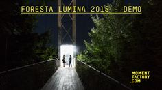 Foresta Lumina 2 : From Park to Illuminated Forest on Vimeo