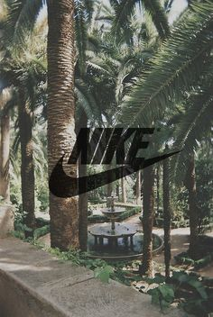 So Cheap!! I'm gonna love this site! Nike shoes outlet discount site!!Check it out!! it is so cool. Only $21