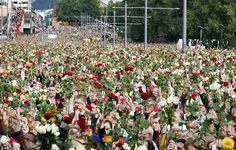Norway massacre: gather in Oslo for 'rose march' tribute English News Headlines, Red And White Roses, World Peace, Oslo, Oh The Places You'll Go, Norway, Dolores Park, Beautiful Places, March