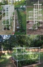 Creative DIY PVC pipe projects on a budget 35 - Diy Garden Projects Tomato Trellis, Bamboo Trellis, Diy Trellis, Tomato Cages, Garden Trellis, Cucumber Trellis, Trellis Ideas, Pvc Pipe Projects, Diy Garden Projects