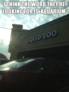 Hilarious images of the day -75 pics- I Think The Word They're Looking For Is 'Aquarium'