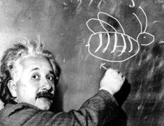 Albert Einstein: Who doesnt love him?