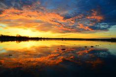 Tumbleweed Sunrise