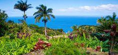 Resultado de imagem para hawaii