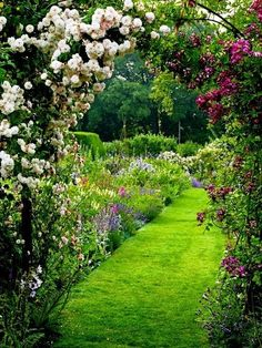 flowersgardenlove:  A magical garden Beautiful gorgeous pretty flowers