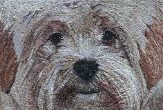 Biggles Freehand Machine Embroidery Portrait commission by Art Sea Craft Sea Freehand Machine Embroidery, Artist Workshop, Sea Crafts, Embedded Image Permalink, Pet Portraits, Your Pet, Pets, Ocean Crafts, Animals And Pets