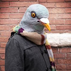 Pigeon Mask - $35--hmm..@Lindsey Bolin  next birthday present maybe??