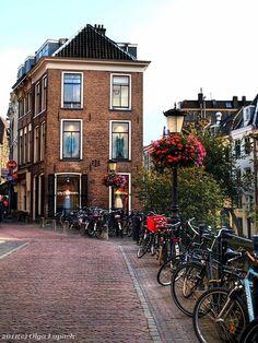 Цветы всегда... Цветы везде... Утрехт, Голландия