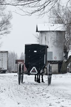 An Amish Buggy in Central Michigan