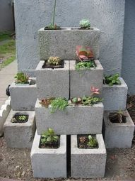 Love this! You could use the blocks as edging a driveway or something, rather than stacking as well.   Cinder block garden.