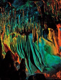 Florida Caverns State Park - Tallahassee Magazine - July-August 2016