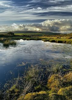 Moorland, Dartmoor National Park, Devon, England - The place of inspiration for my daughters name. England And Scotland, England Uk, Dartmoor National Park, British Countryside, All Nature, Green Nature, British Isles, Cornwall, Belle Photo
