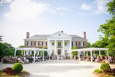 Boone Hall Plantation Wedding, Charleston, SC   Photo by Dana Cubbage Weddings | Planning by Sweetgrass Social | Wedding Painting by Wed on Canvas