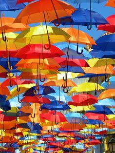 Umbrella installation or installation of dreams? AgitAgueda Portugal