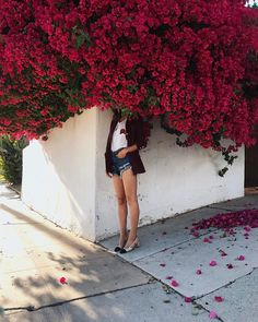"""Polubienia: 107.2 tys., komentarze: 707 – Aimee Song (@songofstyle) na Instagramie: """"Came back to L.A. and bougainvilleas are everywhere. Oh, I missed my city so much! 😍"""""""