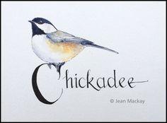 Black-capped Chickadee - jeanmackayart.com
