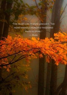 Rumi: The heart has its own language. - rumi poet and persian mystic, AD. Rumi Love Quotes, Soul Quotes, Words Quotes, Positive Quotes, Life Quotes, Inspirational Quotes, Sayings, Motivational, Rumi Poem