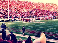 Martin Stadium, Pullman WA ♥ Love is an understatement, this is my home.