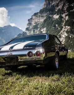 Chevrolet Chevelle SS, muscle cars, retro, nature